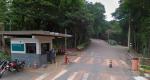 Vereadores querem convocar diretoria da Vale para explicar fim da mineração em Itabira